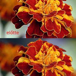 photoshop-tutorial-53-59-softening-edges-6