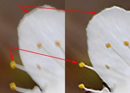 Focus Magic 3.0 Photoshop Plugin 8.